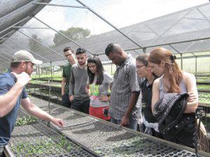 Engenharia Ambiental do UNIARAXÁ participa de curso de Restauração Ambiental